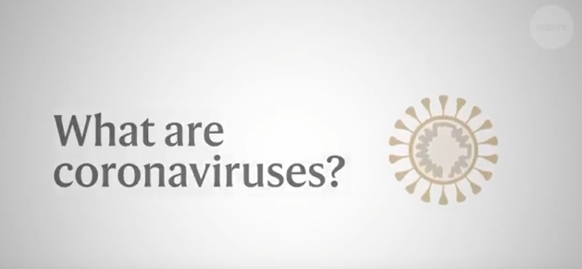 What you need to know about the Wuhan coronavirus